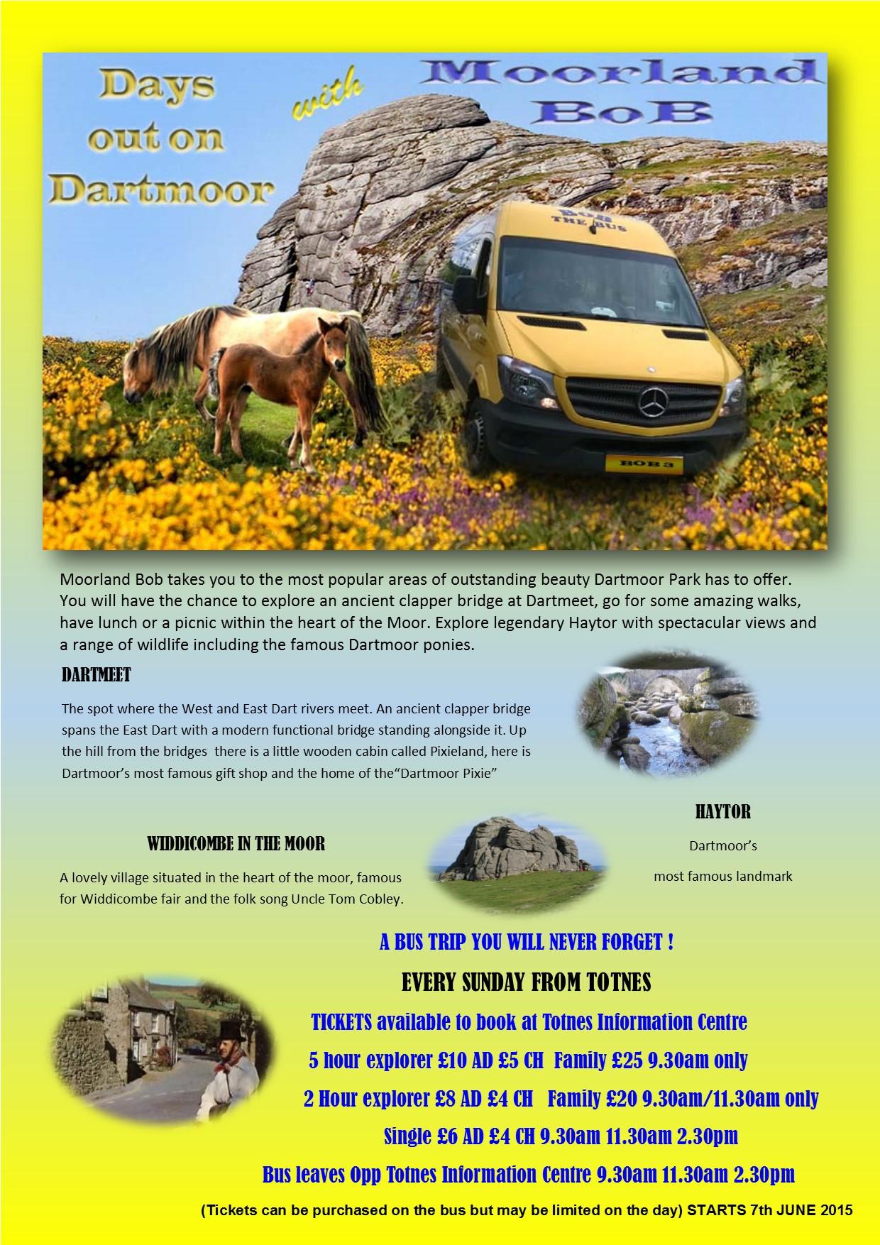 Dartmoor poster